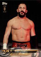 2018 WWE Wrestling Cards (Topps) Bobby Fish 15