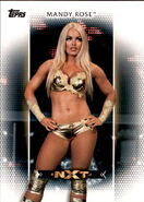 2017 WWE Women's Division (Topps) Mandy Rose 8