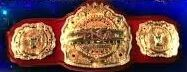 TNA TV Title