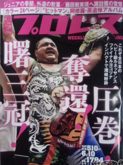 Weekly Pro Wrestling No. 1794
