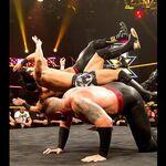 NXT 246 Photo 03.jpg