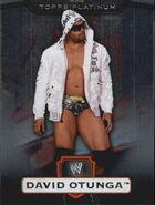 2010 WWE Platinum Trading Cards David Otunga 52