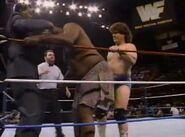 January 23, 1993 WWF Superstars of Wrestling.00015