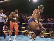May 22, 1993 WCW Saturday Night 14