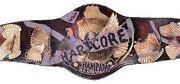 180px-WWE Hardcore