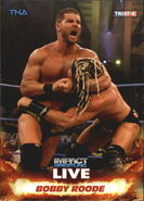 2013 TNA Impact Wrestling Live Trading Cards (Tristar) Bobby Roode 9