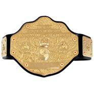 WCW World Championship Replica Title Belt