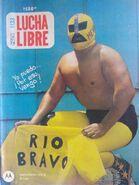 Lucha Libre 1133
