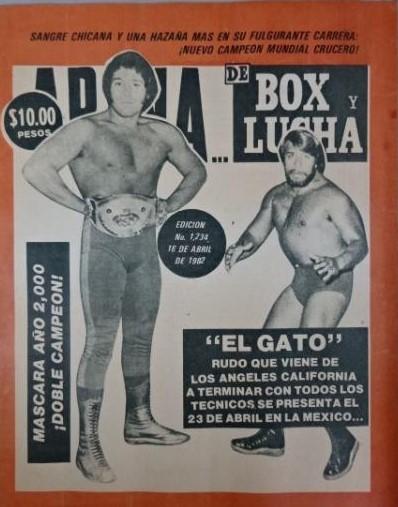 Box y Lucha 1234