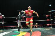 CMLL Martes Arena Mexico (January 15, 2019) 31