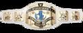 WWE-IC larger