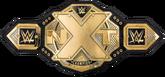 NXT Championship (2017).png