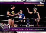 2019 WWE Road to WrestleMania Trading Cards (Topps) Breezango 39