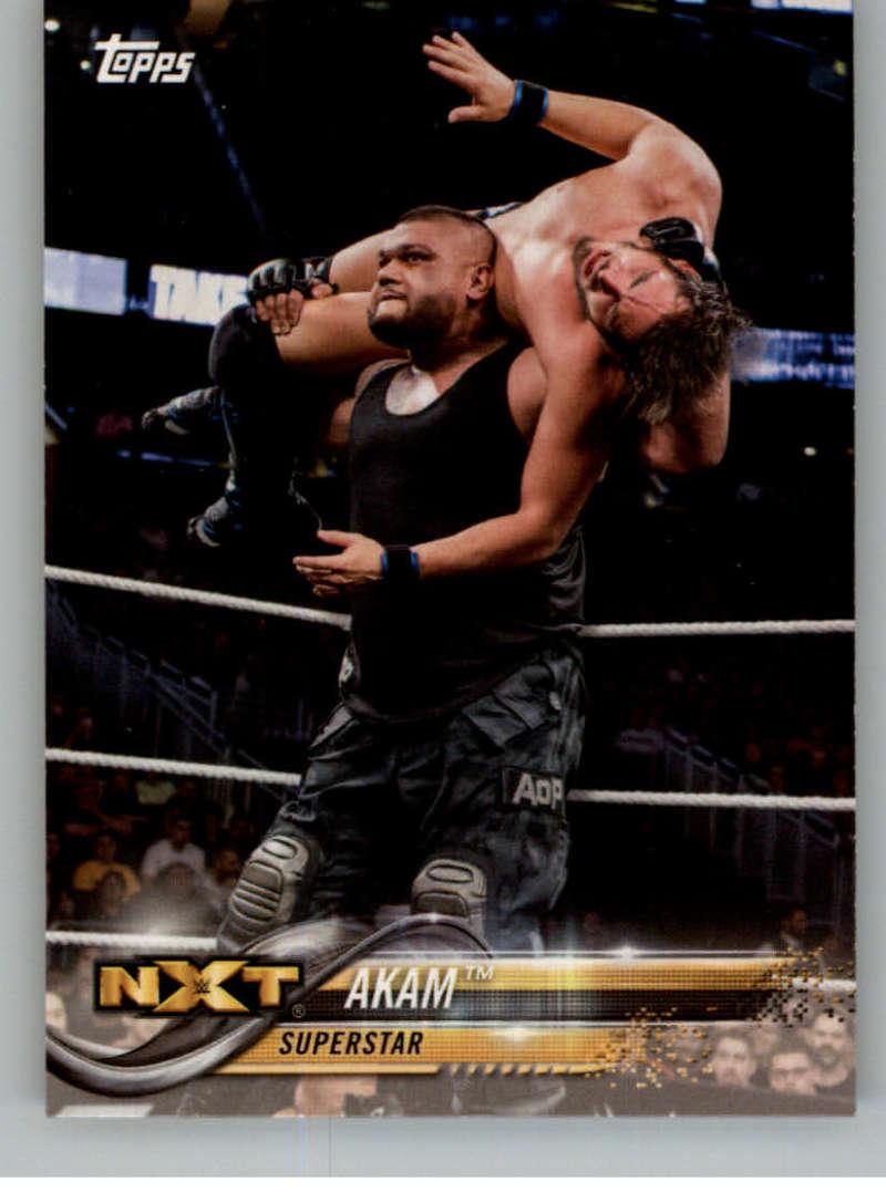 2018 WWE Wrestling Cards (Topps) Akam (No.3)