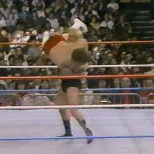 1.16.88 WWF Superstars.00005.jpg