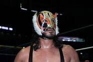 CMLL Domingos Arena Mexico 7-14-19 13
