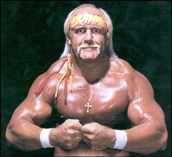 Hulk Hogan Pro Wrestling Fandom