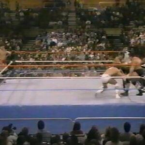 1.16.88 WWF Superstars.00001.jpg