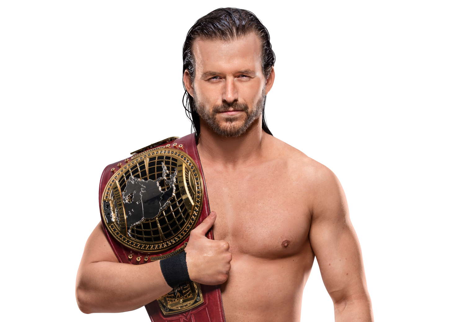 NXT North American Championship/Champion gallery
