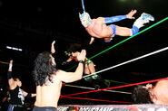 CMLL Domingos Arena Mexico 11-19-17 22
