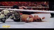 Best of WrestleMania Theater.00043