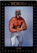 1991 WCW Collectible Trading Cards (Championship Marketing) Sting 49