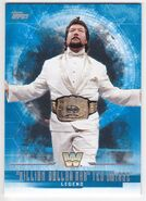 2017 WWE Undisputed Wrestling Cards (Topps) Ted DiBiase 64