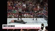 The Best of WWE The Best of In Your House.00080
