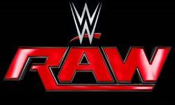 2015 WWE Raw logo (Large).jpg