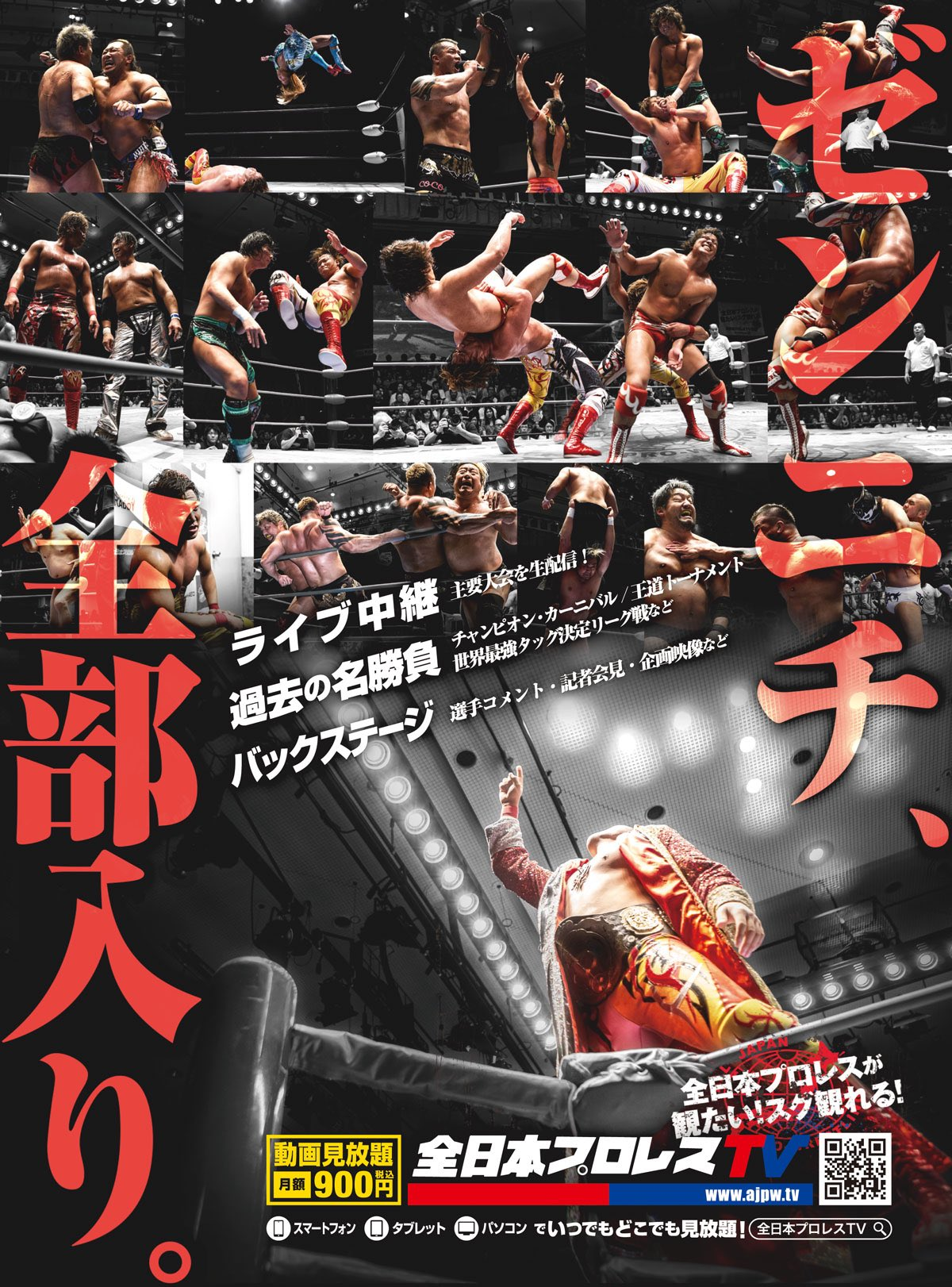 AJPW What We Can Do Now