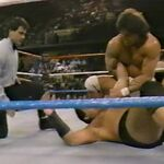 1.16.88 WWF Superstars.00002.jpg