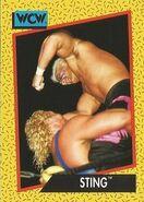 1991 WCW (Impel) Sting 5