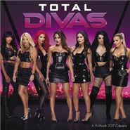 2017 WWE Total Divas Wall Calendar