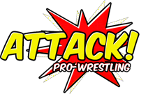 ATTACK! (Thank God It's Not) WinterSlam 2