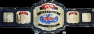 WCW TV Championship 92-95