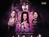 RISE 9: RISE Of The Knockouts