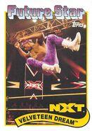 2018 WWE Heritage Wrestling Cards (Topps) Velveteen Dream 110