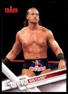 2017 WWE Wrestling Cards (Topps) Big Cass 6
