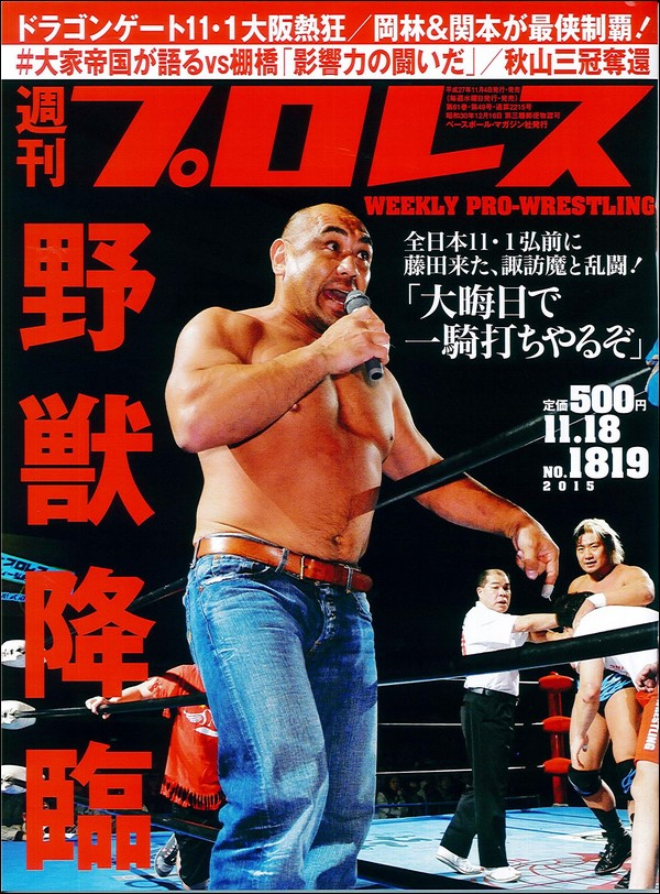Weekly Pro Wrestling No. 1819