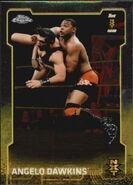 2015 Chrome WWE Wrestling Cards (Topps) Angelo Dawkins 93