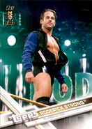 2017 WWE Wrestling Cards (Topps) Roderick Strong 82