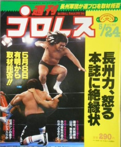 Weekly Pro Wrestling No. 257