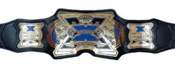 New TNA X division.png