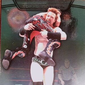 2010 WWE Platinum Trading Cards Sheamus 100.jpg