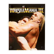 Hulk Hogan & Andre The Giant WrestleMania III Acrylic Wall Art