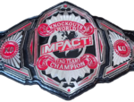 Impact knockouts tag team championship.png
