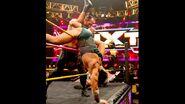 NXT 247 Photo 01