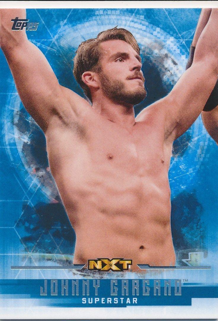 2017 WWE Undisputed Wrestling Cards (Topps) Johnny Gargano (No.48)