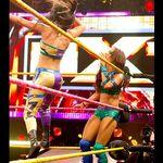 NXT 246 Photo 13.jpg