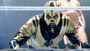 WWE World Tour 2013 - Newcastle.8